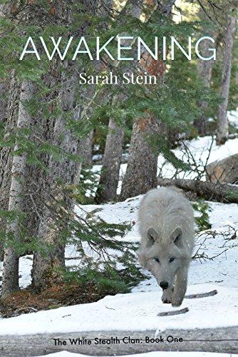 Awakening by Sarah Stein